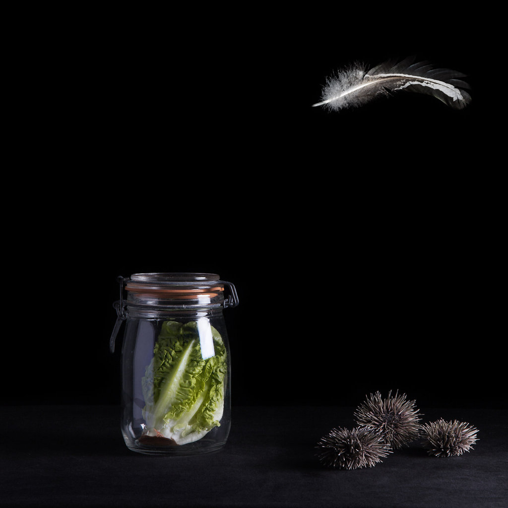 © Charles Roux - Still life with glass jar and urchins
