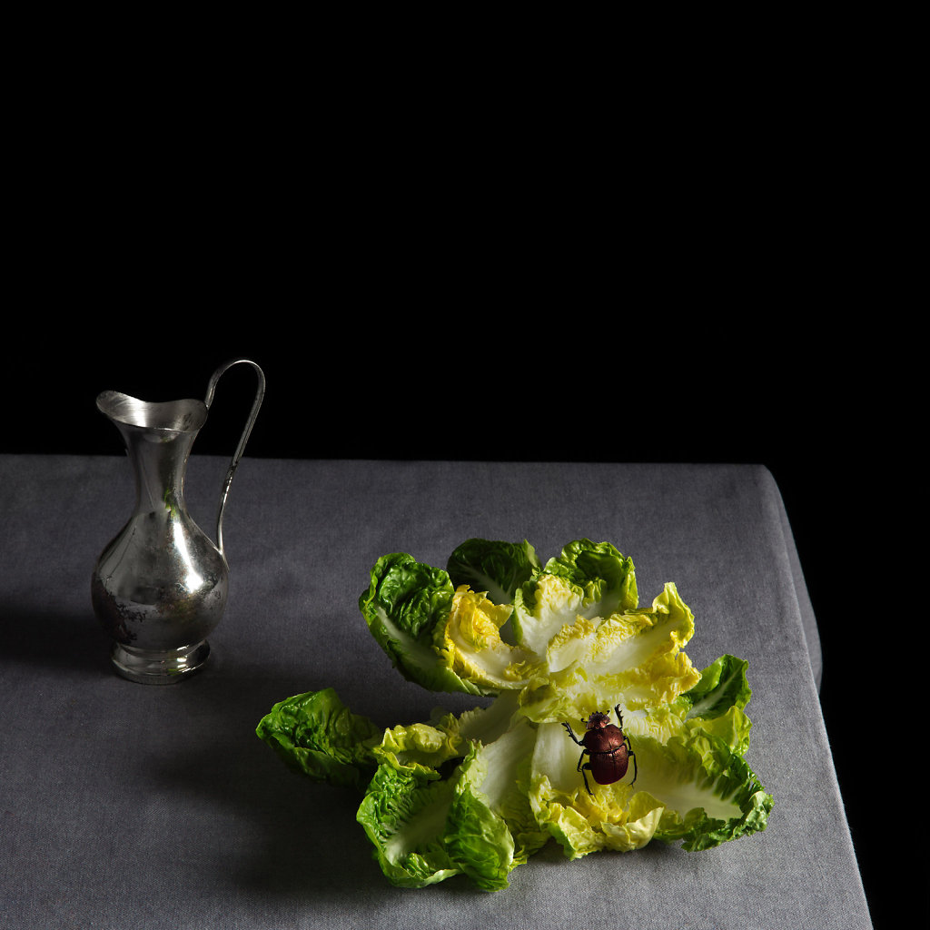© Charles Roux - Still life with lettuce and bu