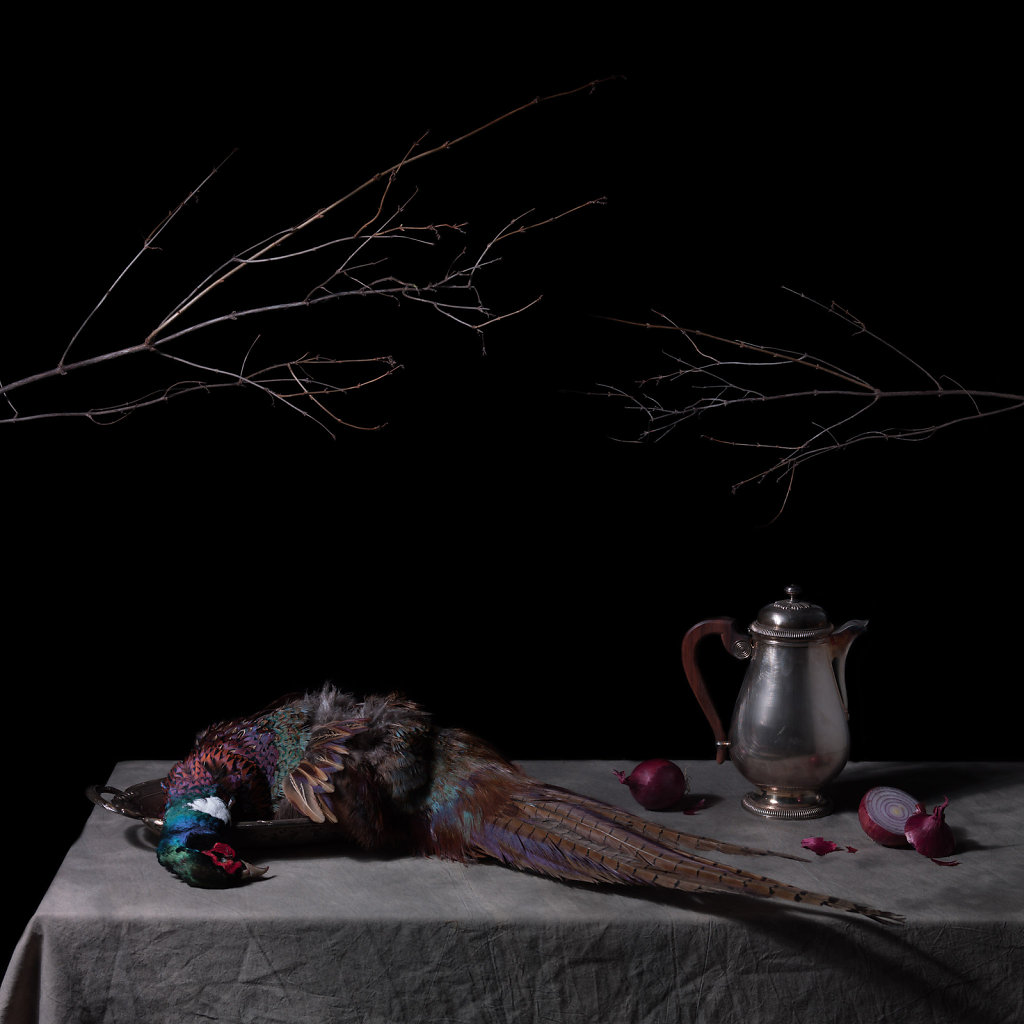 © Charles Roux - Still life with pheasant and red onions